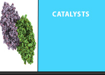 Catalysts Applications: Physisorption, Chemisorption, Porosity, Density